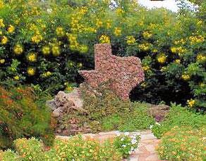 texas-flowerscr