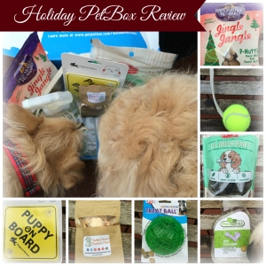 holiday petbox review