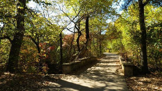 arbor-hills-nature-preserve